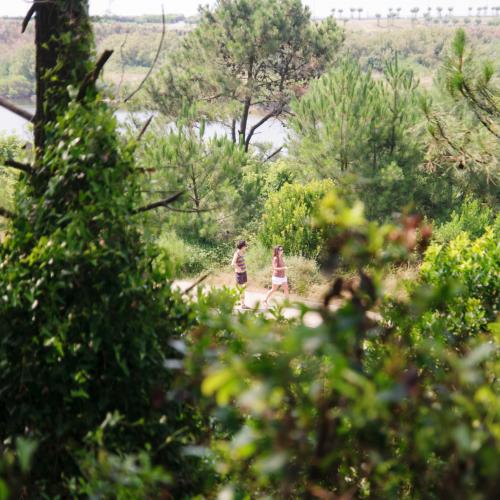 Forêt du Lazaret